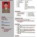 Download CV Word Gratis
