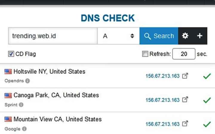 Cek DNS Server